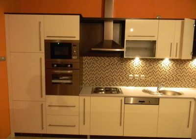 Küche aus Acryl (7)